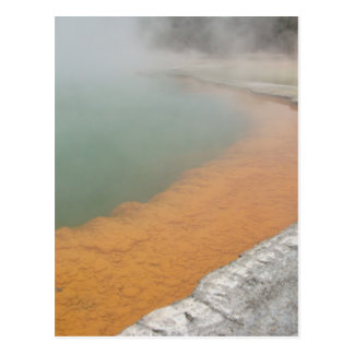 Champagne Pool Postcard