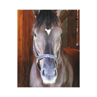 """Champagne Stakes Winner """"Daredevil"""" Gallery Wrapped Canvas"""