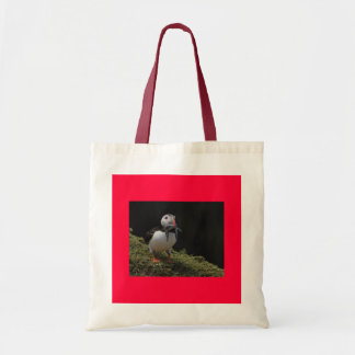 Champion Fisher Puffin Bag