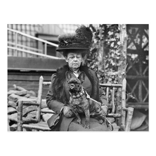 Champion French Bulldog, 1920s Post Card