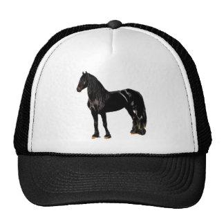 Champion horse cap