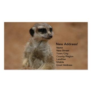Change of Address Cards - Meerkats Pack Of Standard Business Cards