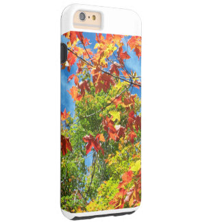 Changing Leaves Nature Ipod Case Tough iPhone 6 Plus Case