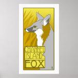 Channel Island Fox Poster