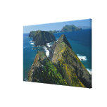 Channel Islands National Park, Southern Canvas Prints