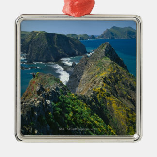 Channel Islands National Park, Southern Christmas Ornament