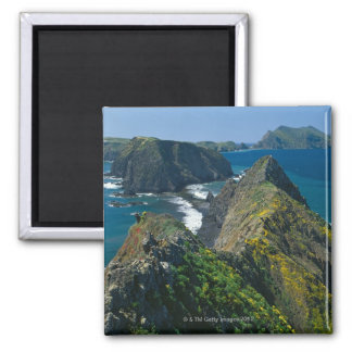 Channel Islands National Park, Southern Square Magnet