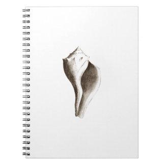 Channeled Whelk (line art) Notebooks