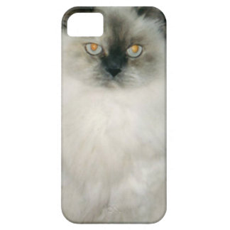 Chantal the Cat iPhone 5 Cover