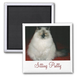 Chantal the Cat Sitting Pretty Magnet