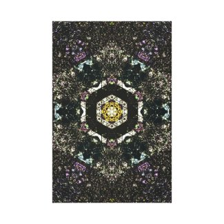 Chaotic Focus Canvas Print