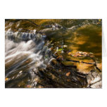 Chapel River Detail Greeting Cards