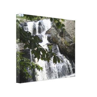 Chapman Falls Wrapped Canvas Print