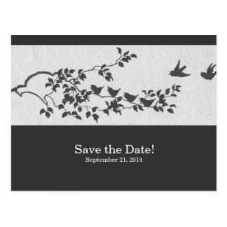 Charcoal and White Vintage Birds Save the Date Postcard