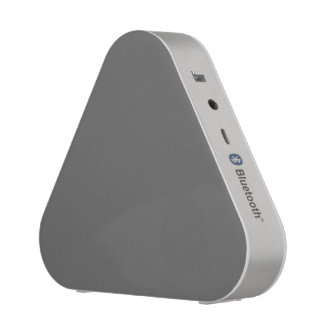 Charcoal Gray Bluetooth Speaker