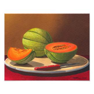 Charentais melons photographic print