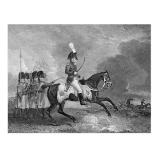 Charger Horse Illustration Postcards