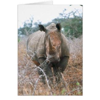 Charging Rhino Card