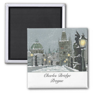 Charles Bridge magnet