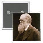 Charles Darwin (1809-82) (photo) 15 Cm Square Badge