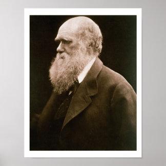 Charles Darwin (1809-82) (photo) Poster