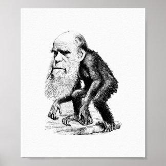 Charles Darwin As An Ape Poster