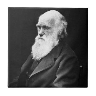 Charles Darwin Portrait Tile
