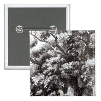 Charles II  Hidden in the Oak Tree 15 Cm Square Badge