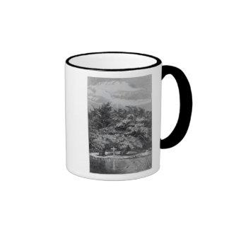 Charles Waterton s Grave Coffee Mugs