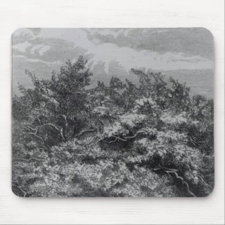 Charles Waterton's Grave Mouse Mat