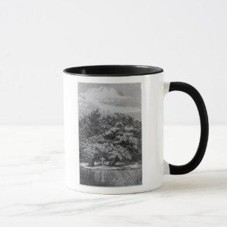 Charles Waterton's Grave Mug
