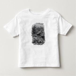 Charles Waterton's Grave Toddler T-Shirt