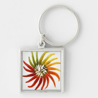 Charleston Hot Peppers Color Wheel Silver-Colored Square Key Ring