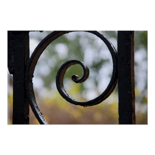 Charleston Iron Gate Detail Poster
