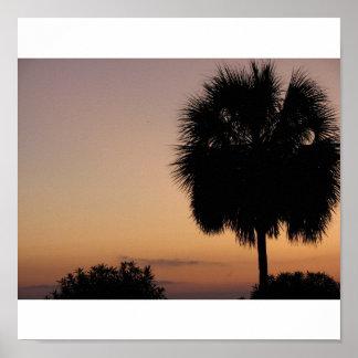 Charleston Palm Poster