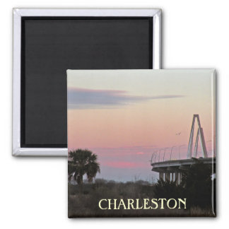 Charleston Souvenir Photo Magnet