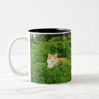 Charlie in the Maple Two-Tone Coffee Mug