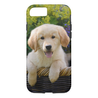 Charming Dog Goldie Puppy, phone iPhone 7 Case
