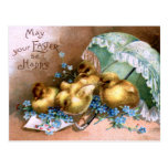 Charming Easter Chicks Post Cards