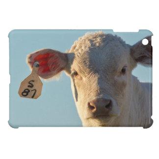 Charolaise Beef Calf Near Augusta, Montana, USA iPad Mini Covers