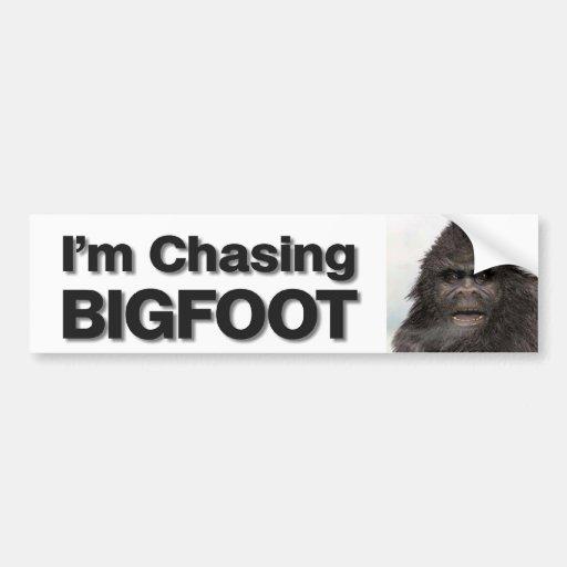 Chasing BIGFOOT Bumper Sticker