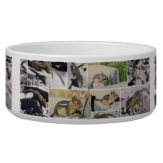 Chasing Chipmunks Dog Water Bowl
