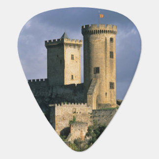 Chateau Comtal Chateau of the Counts of Plectrum