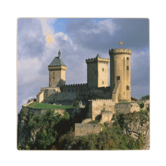Chateau Comtal Chateau of the Counts of Wood Coaster