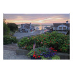 Chatham Fish Pier Summer Flowers at Sunrise Poster