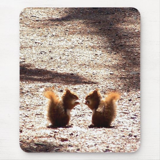 Chatting in the Park Mouse Pad