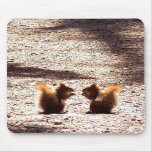 Chatting in the Park Mouse Pads