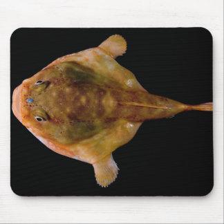 Chaunax Stigmaeus Fish Mouse Pad