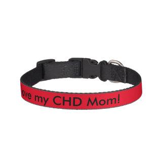 CHD dog collar