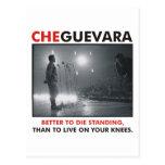 Che Guevara Products & Designs! Postcard